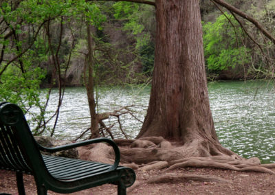 bench-colorado-river-red-bud-isle-texas