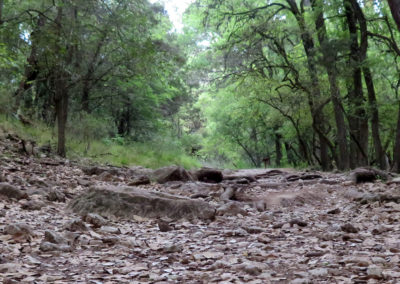 rocky-wooded-trail-texas